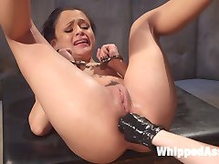 Holly Hendrix is a sex-hungry pain slut being kept for observation by devious doctor Cherry...