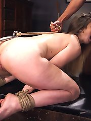 Voluptuous British Bombshell Stella Cox loves her naughty sex toy business but when she gets a...
