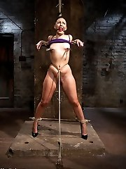 Amazing Ashli Orion returns to HogTied for another round of extreme rope restrain bondage to the severity that can only be found on the greatest rope restrain bondage website on the net, HogTied.com. In sequence 1, Ashli is corded standing with her forearms in elbows together, chicken wing rope restrain bondage, bound firmly to a pole. Her ankles are spread broad with a pillar, and a goods cord is added to her predicament. She likes the pain and the restrain bondage. As Claire enhances the tension on her elbows it just turns her on more and more. In sequence Two, Ashli is folded with her knees open, toes tied to her thighs, and mitts in strappado. A gag head corset is added and her assets is slathered in oil. Her caboose is repeatedly cracked with a dick on a stick. All this bitch can do is jizm. In scene 3, her knees are folded to her chest in a compression bind and her ankles in leather cuffs. Her wrists are corded to her neck prisoner style which is also linked to the pulley and she is hung. All this tart wants and needs is a excellent tearing up. Claire's fist glides lightly into her cootchie and Claire steers the bitch around in the air by her thirsty fuck slot. In scene Four, Ashli is corded in a modified spread eagle. A tall pink cigar is placed under her hips and her knees are trussed open, making her do a kind of ballet position laying down. The oil comes out to accentuate every curve and fold of marvelous flesh she has, making the focal point her cunt mound. Orgasm after orgasm we peel back layers of this slit.