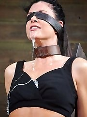 India Summer is an award winning Cougar. She is one of the best in the biz and that it takes about two seconds for her to prove it. Getting plowed from both ends has her dribbling wet, bucking against her bondage, and jizzing madly. It is the most strenuous dicking down that she has ever accomplished. Coming from such a sexy swinger that is high praise.