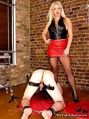 Cock & Ball Torment