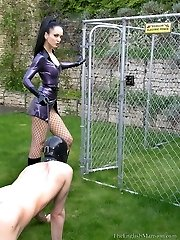 Caged Intercourse Pet