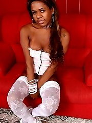 Chocolate tgirl bunny in white stockings solo