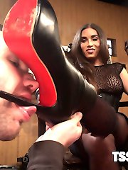 Ts Tori Mayes has one very important question for her slave Will Havoc,