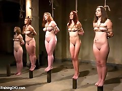 FREE PREVIEW : 