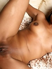 Exotic ebony Nadia Phuket sizes up a huge dick with her mouth before she rides it