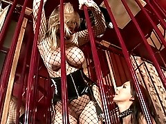 Two big breasted lesbians in fishnets licking and toying their twats in the cage
