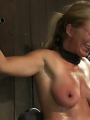 This is part 2 of 3 from the August live show. Dia and Ariel are properly fixed to sybians. Dia is bound spread wide off the ground with a bowling ball pulling on her neck. Ariel is bound in chain and bolted onto her sybian with her nipples tied to the ground and her hair pulled back. Each bondage slut is strained and prepare themselves for intense nipple torment. The sweat begins to drip, the constant strong vibrating becomes difficult as the pussy becomes raw and swollen. Dia's nipples have been suction cupped and are puffy enough for the green castration bands to be applied. Ariel's nipples are pulled tighter and tighter. After heavy floggings Ariel's nipples are viciously whipped off during her orgasms. Dia's breath is constrained as she cums over and over.