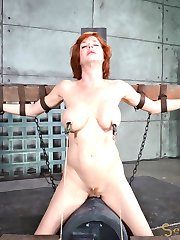 Big breasted redheaded sluts get the very best that we can offer. And Veronica Avluv deserves...