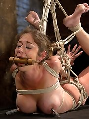 Awesome and incredibly flexible Felony endures a very summoning hogtie. We very first start with her tied on the floor. Her elbows are bound together and pulled thru inbetween her legs up into a rigorous strappado bondage. Her ankles are corded sky high up to a ring. Her thighs are bound and secured too and her pecs is pulled back cute and tight to display her sumptuous fun bags.Felony finishes off so easily and strongly that when she explodes in a cum fury she forgets her name, whats going on, everything. She is hoisted in the air and subjected again and again to impressively rigid orgasms.