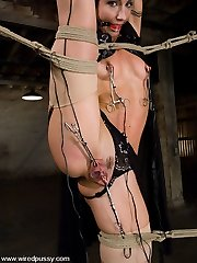 Wow! This shoot has it all! Wenona is an amazing bondage model who loves pain and can bend and...