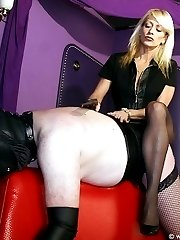 Smell that pantyhose slave!