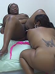Ebony BBW dykes dive between their legs