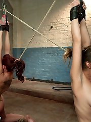 Kelly Divine and Audrey Rose are both delightfully enslaved and share the tasks of suffering punishment and pleasing their sir.  He tells them to disrobe, kiss, spank each other and munch bootie.  Then, with their bums connected by a double completed faux-cock, he uses a monstrous bullwhip to motivate his pain sluts and makes them suck cock.  Next up is a very tricky predicament bondage bondage position that has one girl's hair connected to the others ass hook.  A strong orgasm from one girl causes causes the other to suffer!  Lastly, they are roped in tight restrain bondage and immobilizing postures while getting anally poked!