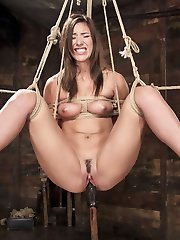 Tall, long legged all natural beauty Rilynn Rae is back on HogTied for her dose of super tight...