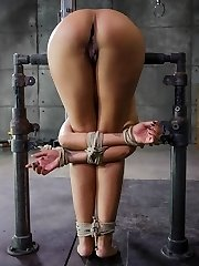 Skin Diamond is one of the hottest babes in bondage right now. She has the kind of round, firm...