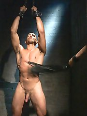 Mike Maverick is slave #133, the new slave in Mr Sebastian Keys' house. Mr Keys enters his new fuck slave's cell, and wastes no time playing with his hard cock. Mr. Keys tests his plaything's ability to take a lot of punishment by tying him to the wall. Mr. Keys covers the pain slut's tender body in clamps. #133 is able to withstand the intensity of the clamps long enough for Mr. Keys to reward him by whacking the clamps off with a crop.  Mr. Keys then chains up #133, and unleashes his flogger on him. #133 begs for release by taking Mr. Keys throbbing dick down his throat. Mr. Keys then throws #133 off his cock and continues to flog him mercilessly. Mr. Keys likes to mix pain with his pleasure and gives #133 the privilege of taking Mr. Keys' hard dick in his ass. #133 is locked in a stockade, while Mr. Keys canes him, while still pushing his cock down #133's little hole. Mr. Keys approves of his new fuck slave and christens him with his hot cum. #133 is finally allowed to shoot his load all over Mr. Keys' boots.