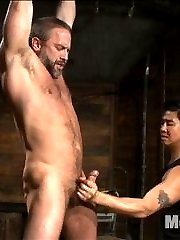Van and John Jammen wheel in hot muscled stud, Dirk Caber as he's bound with duct tape around his mouth.  Suspended by his arms, Dirk's clothes are torn away as the two pervs start playing with his cock.  Van shoves John's head down as he swallows Dirk's cock, his moans muffled by the duct tape stuck to his lips.  With his hands bound at the thighs, Dirk's rock hard cock stands at attention as his two captors continue teasing him.  Pre-cum drips out of Dirk's cock as the two pervs pinch nipple clamps onto the muscled stud and tease him with the vibrating hitachi's on his cockhead.  On his knees, Dirk has the shockspot machine fuck his ass from behind as John Jammen gives him a face full of cum.  They then roll the hairy hunk over on his back and continue to fuck him with the machine while they milk all the cum out of his cock and finish him off with some post-orgasmic torment.