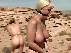 Domination & Submission in Desert