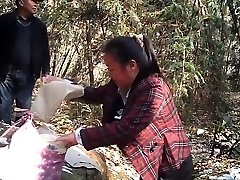 Chinese Parent-2