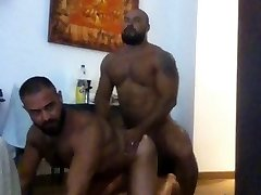 Two bears tearing up