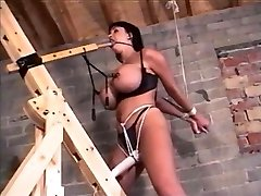 Bound and ball-gagged
