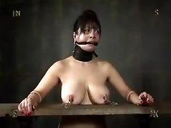 Bondage & Discipline Girls