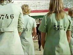 Gefangene Frauen (1980)