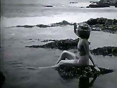 Desnudo en la playa