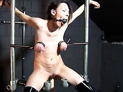 Tit restraint and screw machine