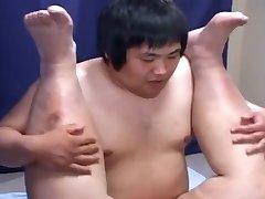 gordito japón 03