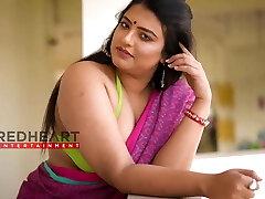 caliente de la india señora en el saree - sareelover - nancy