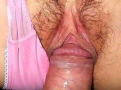Sex Fantasy - Hot Puss Collections