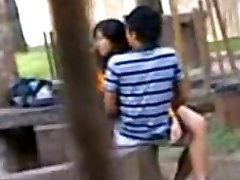 Indian College College Girls Fucking in public park Voyeur Recorded by people