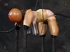 Pet Girl Spandex Bondagel