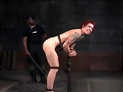 Tattooed Nt Tormented Submissive Caned Harsh Free Porn 5f