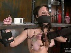 Girl Machine Boned Shocked And Gagged