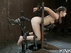 Fighting gals get punished and ass fucked