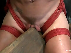 Rigid Bodied Slut, Felony, is Torn Apart During a Long Day of Aggressive Torture
