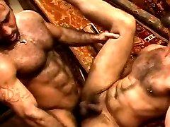 HAIRY MUSCLE COUPLE PAREJA DE OSOS