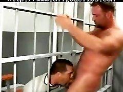 Bears into the Jail
