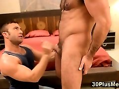 Muscly bear gets sucked