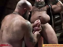 MUSCLE BULL Have Fun IN THE DUNGEON