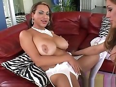 Big-chested tgirls exchange BJs
