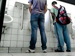 divertido toalett publico