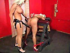 Blonde Babe Bound And Banged - Maxine X