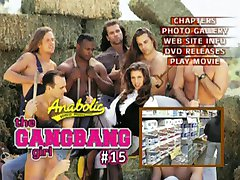 THE GANGBANG GIRL 15