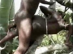 African first-timer fuck on the tree