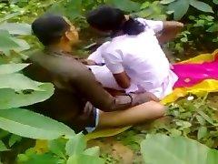 Indijski bonk u šumi