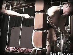 Fag bear policeman sends a painful part2